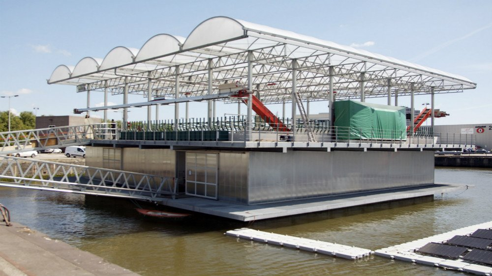 Value Change in Action: The Floating Farm, Rotterdam